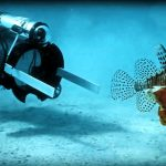 Enviroment: First Robot Lionfish Capture (RSE Guardian LF1)