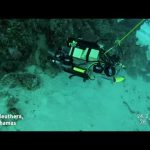 Enviroment: RSE Lionfish Capture Montage from Cape Eleuthera, The Bahamas