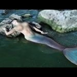 Interesting Facts: The New Evidence of Real Mermaid Found 2018