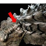 People: Most Unbelievable Fossils Ever Unearthed